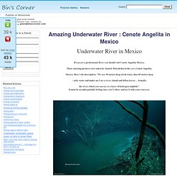 Amazing Underwater River : Cenote Angelita in Mexico