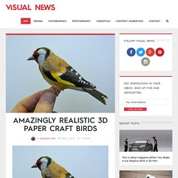 Amazingly Realistic 3D Paper Craft Birds