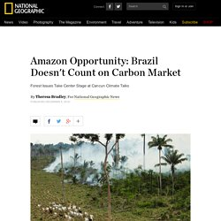 Amazon Opportunity: Brazil Doesn't Count on Carbon Market
