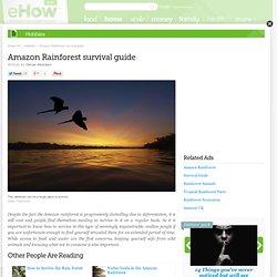 Best Way - Amazon Rainforest Survival Guide
