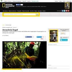 Amazônia ilegal
