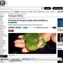 O veneno de rã que é usado como remédio na Amazônia - Notícias - R7 Tecnologia e Ciência