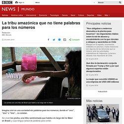 La tribu amazónica que no tiene palabras para los números - BBC Mundo