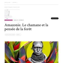 Amazonie. Le chamane et la pensée de la forêt - Pointe-à-Callière