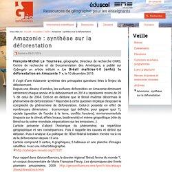 Amazonie : synthèse sur la déforestation