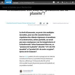 """L'Amazonie est-elle le """"poumon de la planète""""?"""