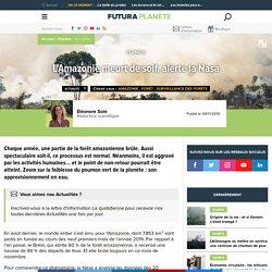 L'Amazonie meurt de soif, alerte la Nasa