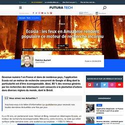 Ecosia : les feux en Amazonie rendent populaire ce moteur de recherche inconnu