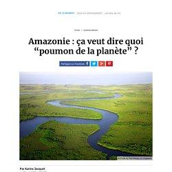 """Amazonie : ça veut dire quoi """"poumon de la planète"""""""