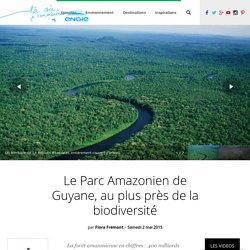 Le Parc Amazonien de Guyane, au plus près de la biodiversité