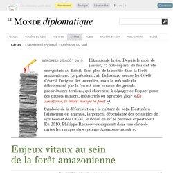 Enjeux vitaux au sein de la forêt amazonienne, par Philippe Rekacewicz (Le Monde diplomatique, octobre 2010)