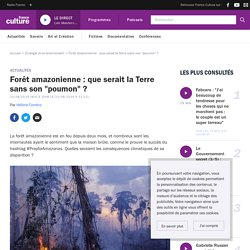 """Forêt amazonienne : que serait la Terre sans son """"poumon"""" ?"""