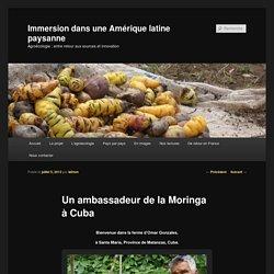 Immersion dans une Amérique latine paysanne