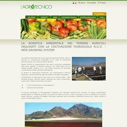 La bonifica ambientale dei terreni agricoli inquinati con la coltivazione fuorisuolo