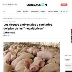"""Los riesgos ambientales y sanitarios del plan de las """"megafábricas"""" porcinas - ENREDACCIÓN - Córdoba - Argentina"""