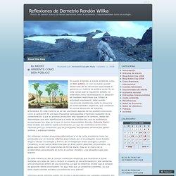 Reflexiones de Demetrio Rendón Willka