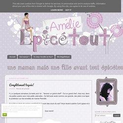 Amélie Epicétout : Complètement toquée!