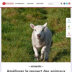 Améliorer le respect des animaux d'élevage, une priorité forte pour faire évoluer les filières animales