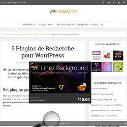 5 plugins pour améliorer la recherche WordPress