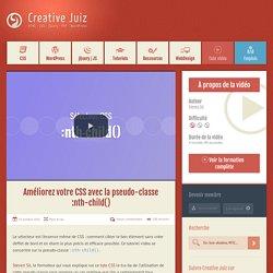Améliorez votre CSS avec la pseudo-classe :nth-child() « Creative Juiz