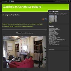 Aménagements en Carton - Meubles en carton - Angers