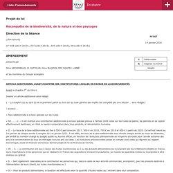 Amendement – En Séance