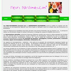 Les THES MICROBIENS (Compost tea)