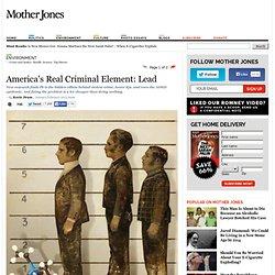 America's Real Criminal Element: Lead