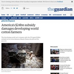 America's $24bn subsidy damages developing world cotton farmers