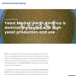 Yeast Market: North America is dominating region with high yeast production and use – Marketintelreportsblog