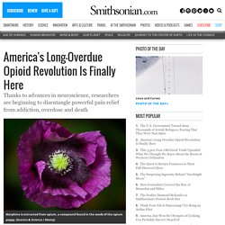 America's Long-Overdue Opioid Revolution Is Finally Here