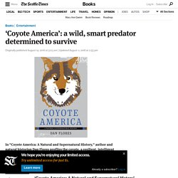 'Coyote America': a wild, smart predator determined to survive