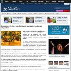 RADIO ALGERIE 08/06/15 Loque Américaine : les abeilles Africaines menacées de disparition