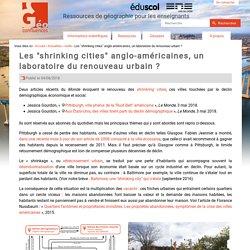 """Les """"shrinking cities"""" anglo-américaines, un laboratoire du renouveau urbain ?"""