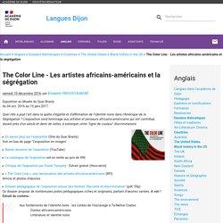The Color Line - Les artistes africains-américains et la ségrégation - Langues Dijon