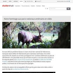 Notre hommage aux parcs nationaux américains en vidéo - Le blog de Shutterstock