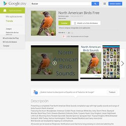 North American Birds Free