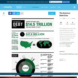 The American Debt Crisis