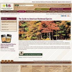 American Hardwood Species Guide