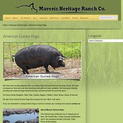 Maveric Heritage Ranch Co