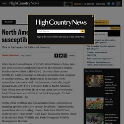 HIGH COUNTRY NEWS 07/07/20 North American bats may be susceptible to SARS-CoV-2 - This is bad news for bats and humans.