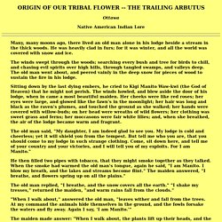 Native American Indian Lore: ORIGIN OF OUR TRIBAL FLOWER