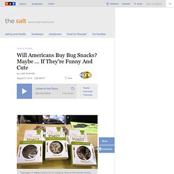Will Americans Buy Bug Snacks? Maybe ... If They're Funny And Cute