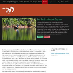 Amérindiens de Guyane