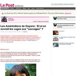 """Les Amérindiens de Guyane : Et si on ouvrait les cages aux """"sauvages"""" ? - Les Amérindiens Wayana sur LePost.fr"""