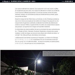 En Amérique centrale, la gangrène des «maras»