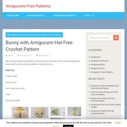Bunny with Amigurumi Hat Free Crochet Pattern - Amigurumi Free Patterns