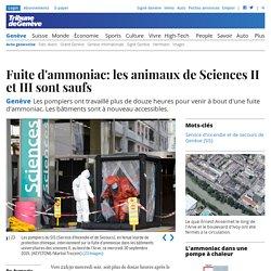 Genève: Fuite d'ammoniac: les animaux de Sciences II et III sont saufs - News Genève: Faits divers