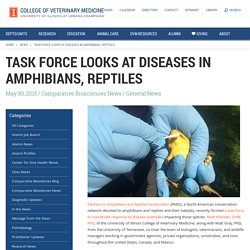 UNIVERSITY OF ILLINOIS 30/05/15 Task Force Looks at Diseases in Amphibians, Reptiles - See more at: