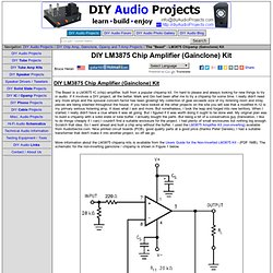 "The ""Beast"" - LM3875 Chip Amplifier (Gainclone) Kit - Audiosector.com"